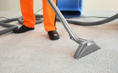 Is It Time to Hire A Commercial Carpet Cleaning Service for Your Office?